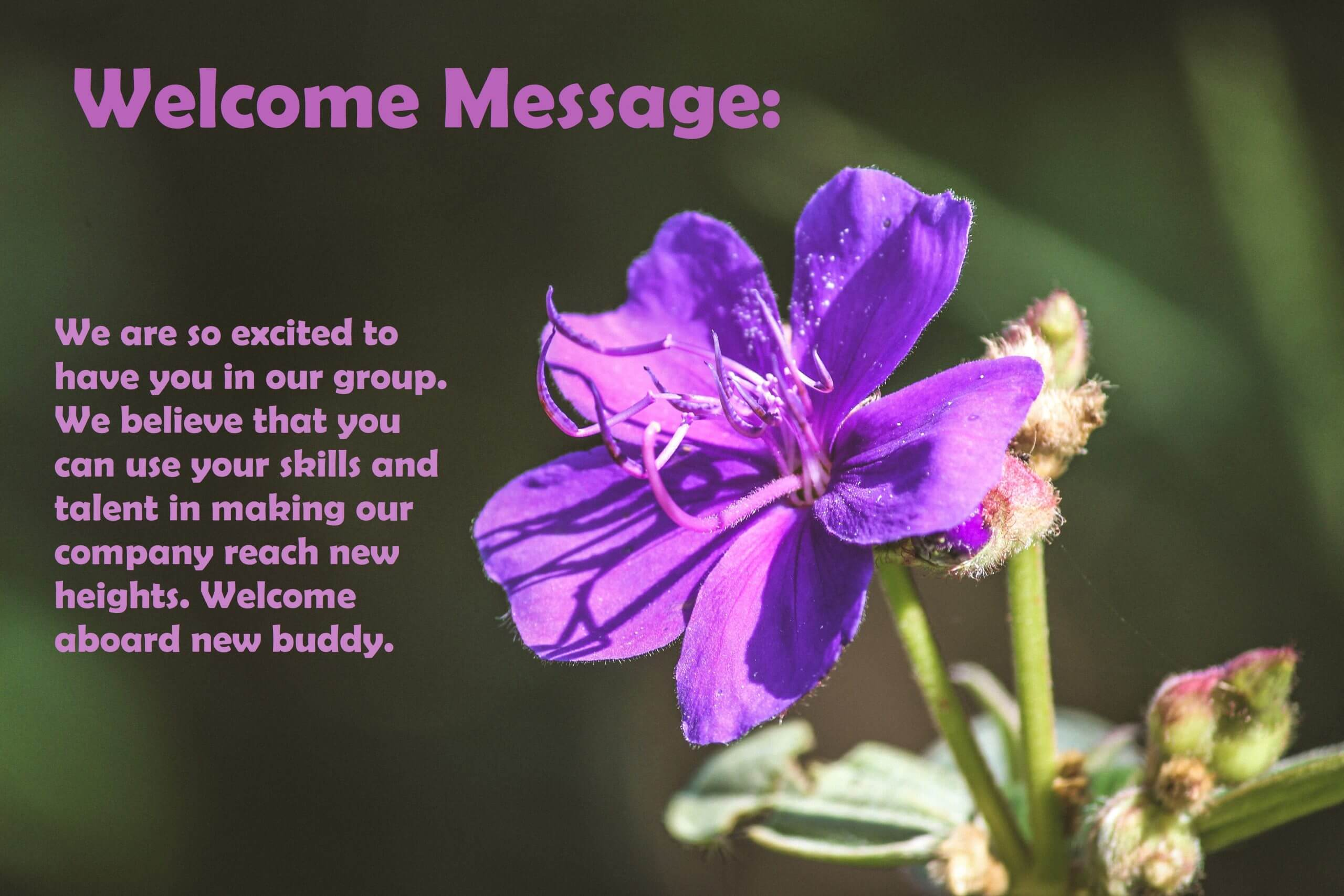 Welcome Back Message For Staff, Boss, Employee, Coworker