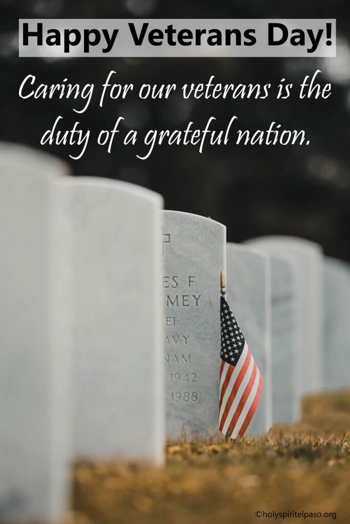 Veterans Day best Quotes